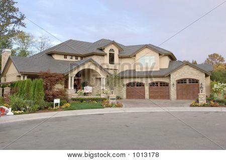 Luxury American House