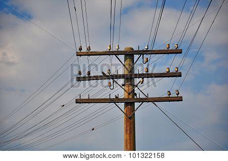 Telegraph pole.