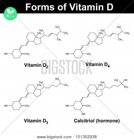 Forms Of Vitamin D