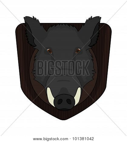 Boar head in wood shield. Color