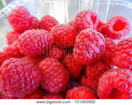 Raspberries in a punnet