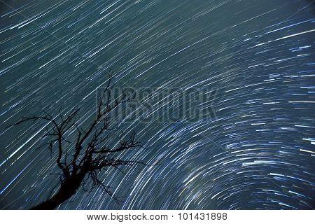 Star Trails Timelapse