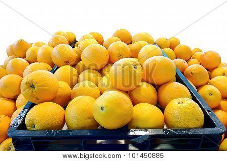 Navel Orange, Group Of Friut Isolated White Background