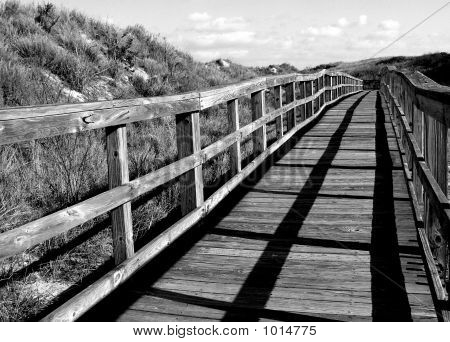 an old walkway at a secluded beach in virginia beach. poster