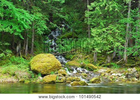 Lochsa Feeder Creek Falls