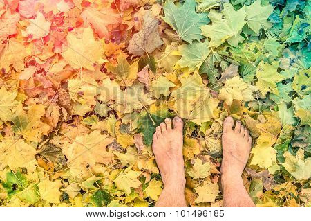 Naked Barefoot On Leaves Park Ground - Freedom Wanderlust  Lifestyle And Emotional Feelings