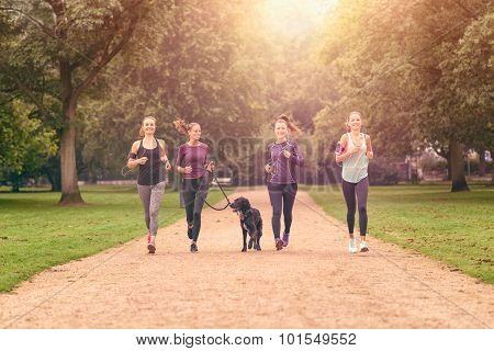 Healthy Women Jogging At The Park With A Dog