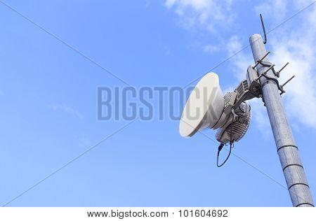 Cellular dual mode antenna