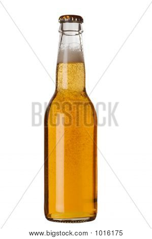 Beer Bottle With Liquid