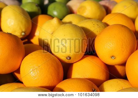 Ripe Orange And Sicilian Lemons For Sale In Greengrocers Shop In Italy
