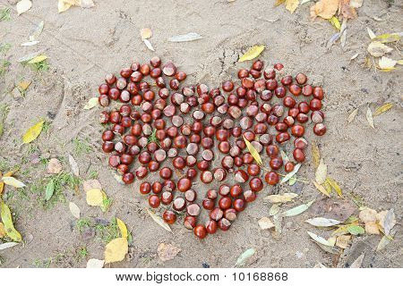 Chestnut Heart On The Sand