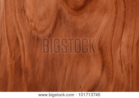 Brown Wood Texture - Spruce