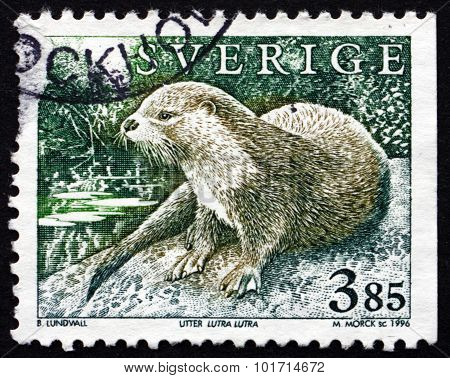 Postage Stamp Sweden 1996 European Otter