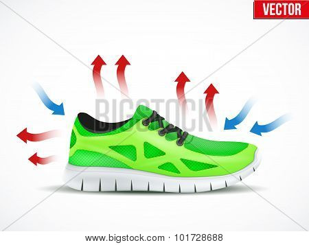 Technical illustration of a shoes waterproof and air conditions