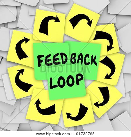 Feedback Loop words on sticky notes to illustrate a repeating cycle of reactions, information, input and output