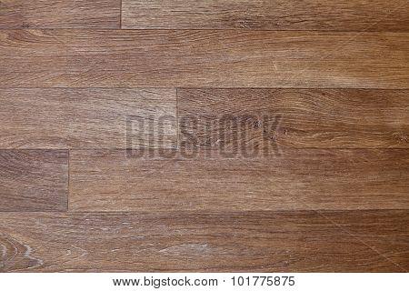 Hardwood Linoleum