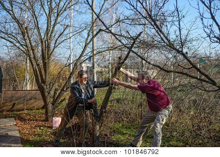 Two Men Are Grubbing Tree Roots At The Rural Garden.