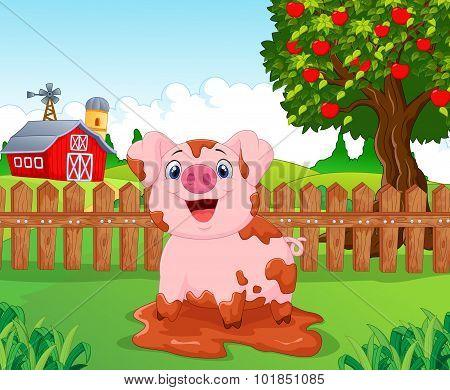 Cartoon play pig slurry in the farm