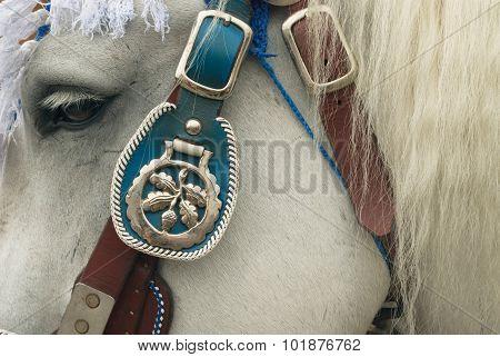 Oktoberfest horse Bridal