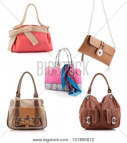 Women leather bags set isolated on white.