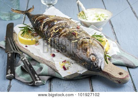 Barbecue Bonito