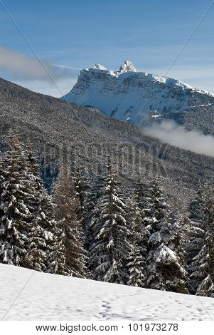 Winter Scene, The Dolomites, Italy