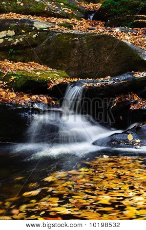 Mountain Stream And Waterfall With Fall Colors