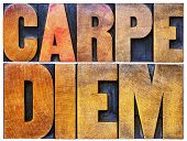 Carpe Diem  - enjoy life before it is too late, existential cautionary Latin phrase by Horace - isolated text in vintage letterpress wood type printing blocks stained by color inks poster