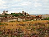 Rocks and plants infront of castle at Cote de Granite Rose, Brittany France poster