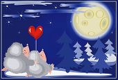 Hedgehogs looks on the moon in night. poster
