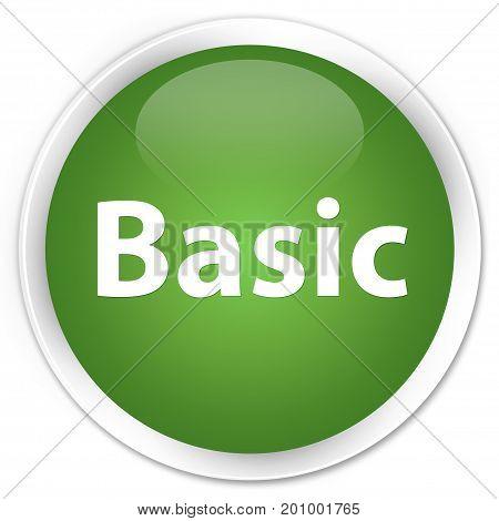 Basic Premium Soft Green Round Button