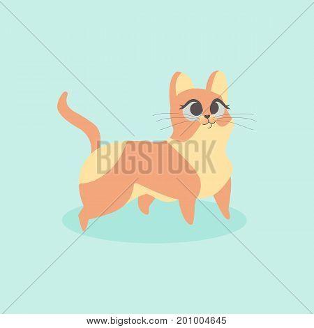 Cute little orange cat vector illustration. Curious kitten
