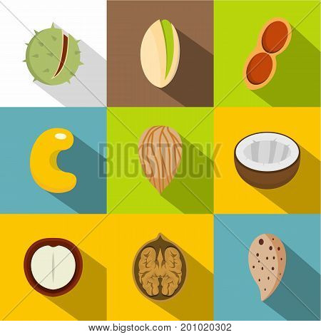 Various kinds of nuts icons set. Flat set of 9 various kinds of nuts vector icons for web with long shadow