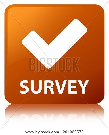 Survey (validate Icon) Brown Square Button
