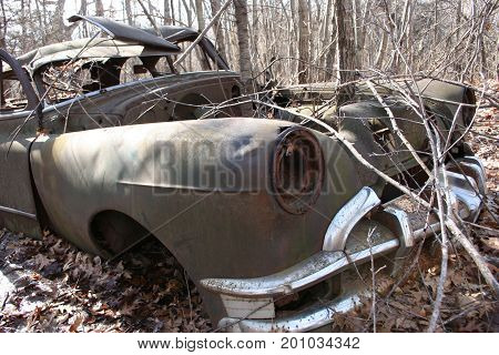 An old rusty car abandoned for decades in the forest