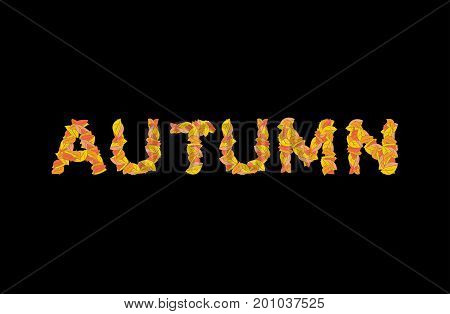 Autumn Lettering. Yellow Leaves Of Abc. Autumnal Alphabet. Letters Of Fallen Leaves