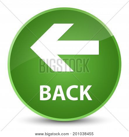 Back Elegant Soft Green Round Button