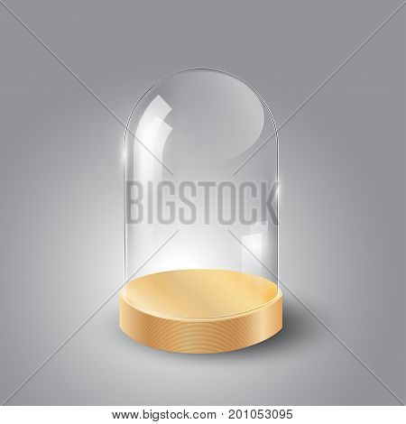 Glass dome and wood tray, transparent vector illustration