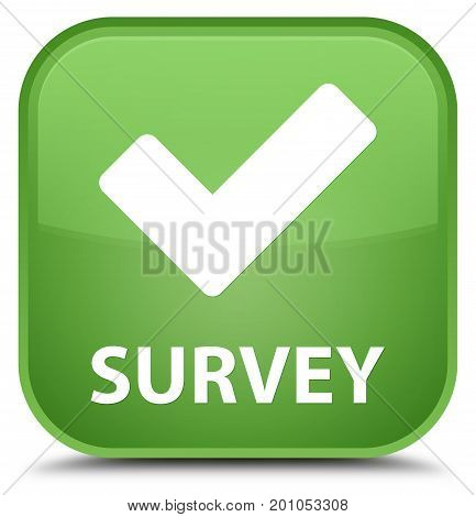 Survey (validate Icon) Special Soft Green Square Button