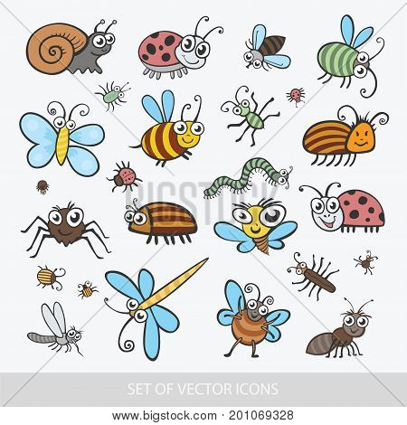 Set funny insects. Isolated on white background. Wasp bee bumblebee butterfly worm caterpillar beetle ladybug grasshopper fly mosquito dragonfly spider snail ant Colorado beetle. flat vector icon