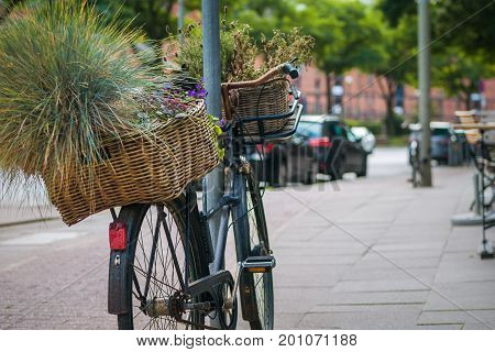 Vintage bycicle with green plants in basket parked on the street.