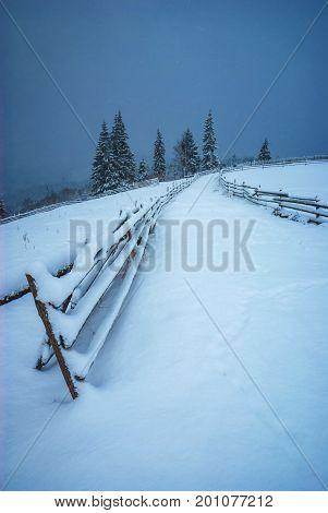 Winter In Valley