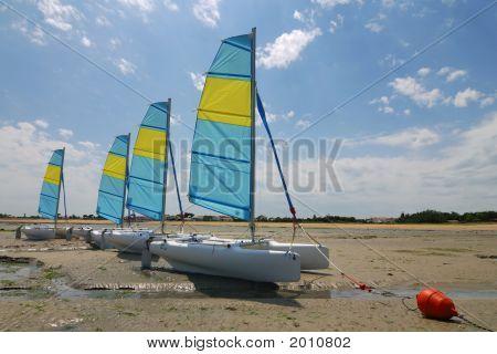 Catamaran Sailing Boats