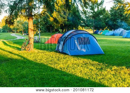 Tents Camping area in beautiful natural place with trees and green grass