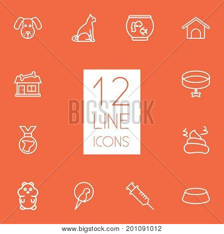 Collection Of Collar, Cat, Bowl And Other Elements.  Set Of 12 Animals Outline Icons Set.