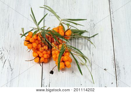 Sea buck thorn berries Hippophae rhamnoides on wooden board. White table in provence style with common sea buckthorn