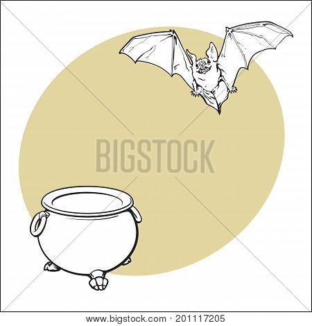 Hand drawn Halloween symbols - pumpkin jack o lantern and flying vampire bat, sketch vector illustration with space for text. Sketch style Halloween pumpkin, jack o lantern and flying bat