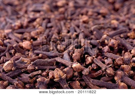 Cloves Perspective Background