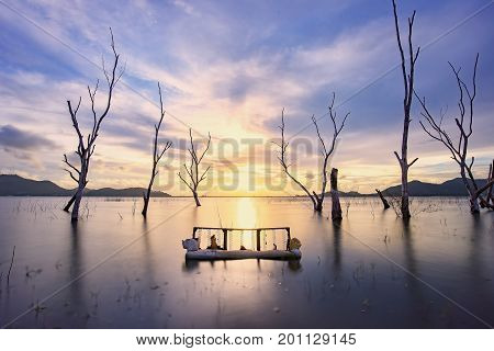 An old sofa was placed in the reservoir. The background is the beautiful scenery of perennial trees died in the in twilight time.