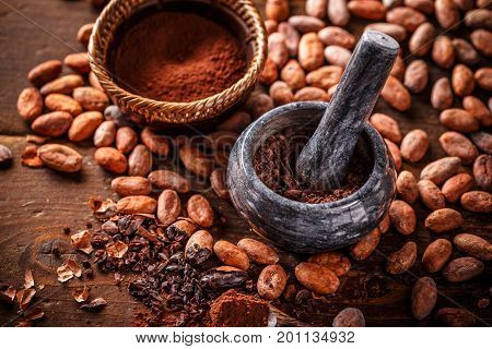 Cocoa concept with stone mortar and pestle with raw peeled and crushed Theobroma cacao cocoa beans